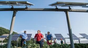 Community Solar, Community Solar Guide, Solar Energy, YSG Solar