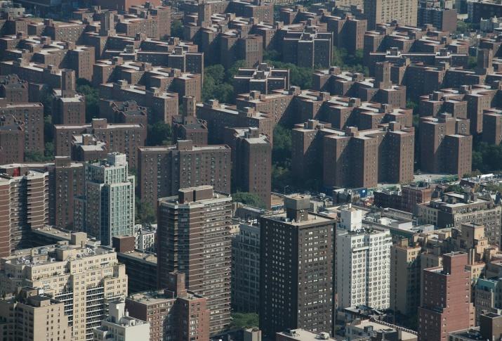 YSG Bronx